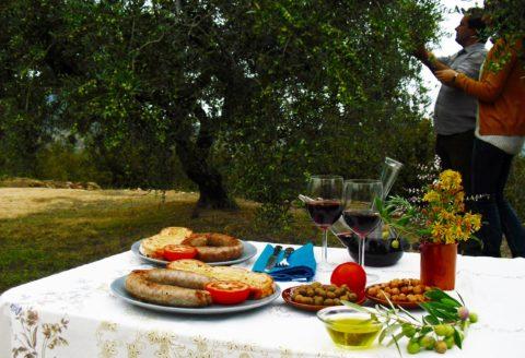 Desayuna entre Olivos Centenarios